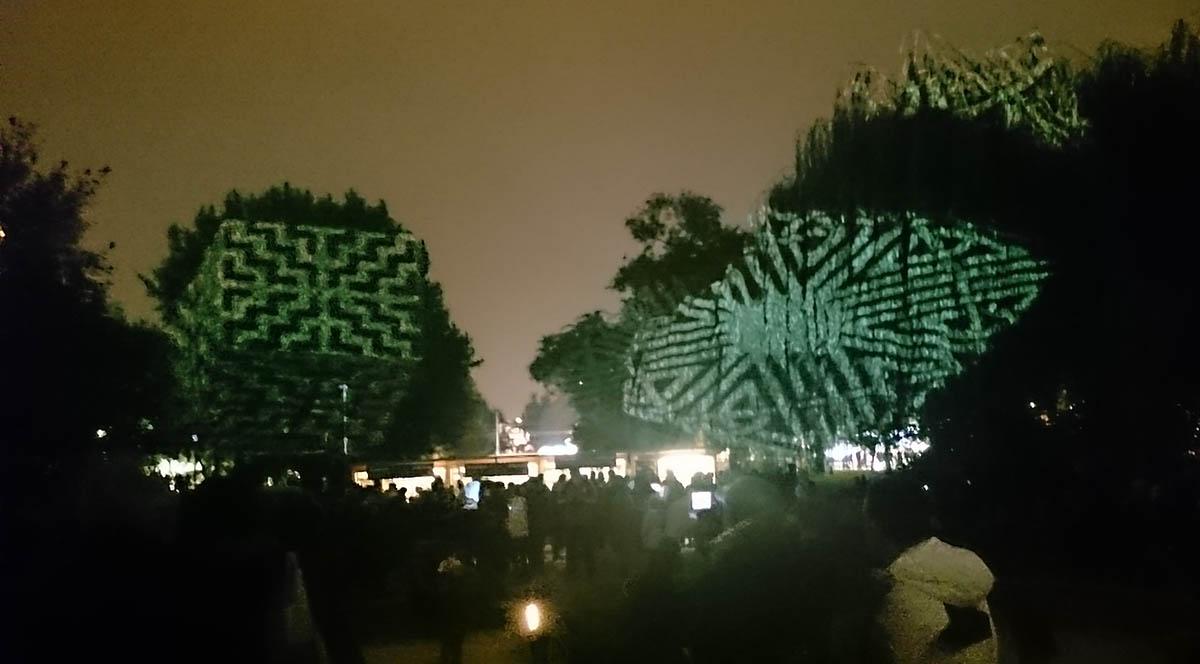 signal-stromy